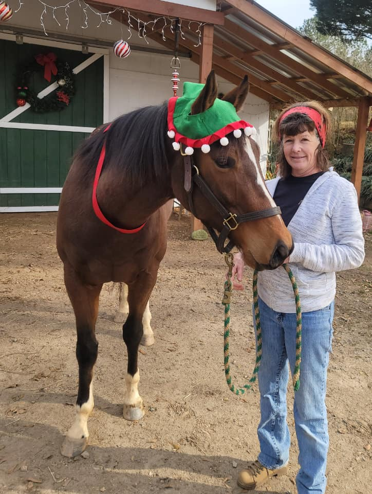 Forrest Cat - A 2020 Christmas Pony!